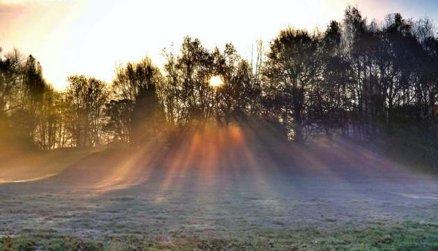 冬の太陽の光