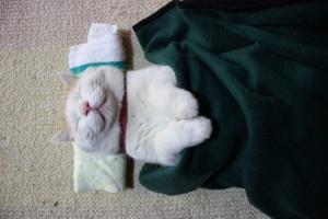 しっかり熟睡する方法