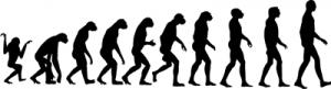 ワードプレスの進化